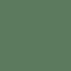 TD115F - Yucca